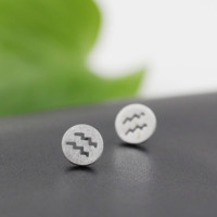 Fashion Simple 925 Sterling Silver 12 constellations Earrings(Aquarius) ,a perfect gift !