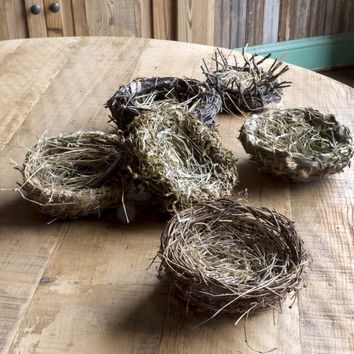 Natural Woven Bird Nests - Set of 6