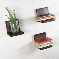 Floating Shelf - Sconce Shelf - Espresso Shelves - Wall Storage - Bookshelves - Set of 3 - Espresso- Simple Shelf