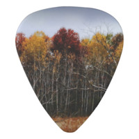 Red and Yellow Fall Birch Trees Guitar Pick