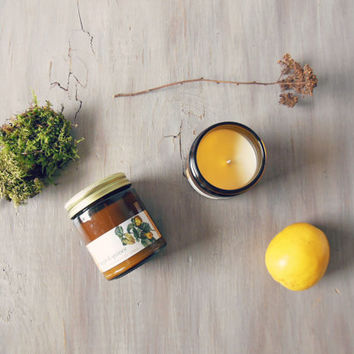 dappled quince soy candle | 8 oz apple, lemon and oak moss naturally scented aromatherapy candle | fall & winter holiday fragrance