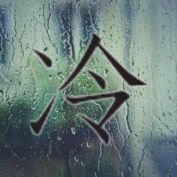 Cool Kanji Symbol Style #5 Vinyl Decal - Outdoor (Permanent)