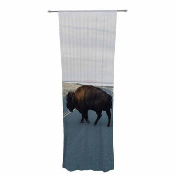 """Chelsea Victoria """"Buffalo Crossing"""" Brown Blue Animals Photography Decorative Sheer Curtain"""