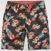 Charles And A Half Hermosa Mens Shorts Multi  In Sizes