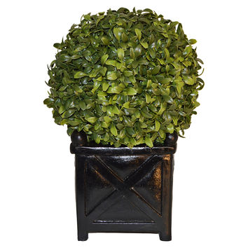 "13"" Boxwood Ball in Planter, Faux, Arrangements"