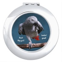Secretive African Gray Parrot Travel Mirror