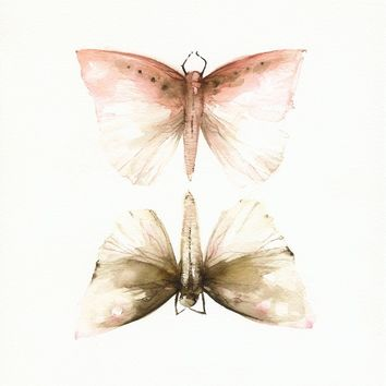 Pink and Mocha Moths-Print of watercolor -  11 x 17""