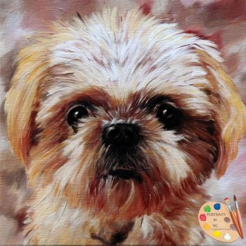 Pet Portraits - Dog Portraits - Shih Tzu Portrait 425