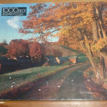 Winding Road 1000 Piece Jigsaw Puzzle