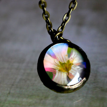 Woodland Nymph Real Flower Pendant, Natural Glow Rainbow Antiqued Bronze Mirrored Dichroic Glass Doublet Dome Necklace, Botanical Jewelry