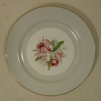 Noritake Margarita 5049 Vintage 10in Dinner Plate China Gold Rim -- Used