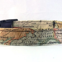 Globes and Maps dog collar