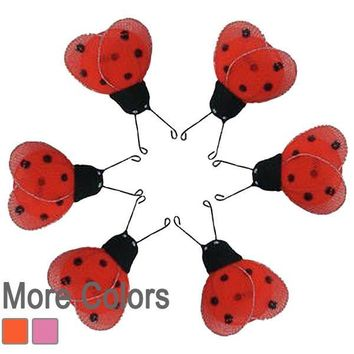 Mini Morgan Ladybug Decorations