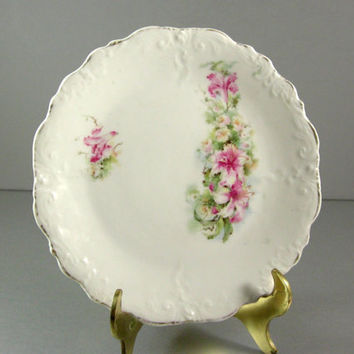 Antique Vintage Porcelain Collector Plate / Flowers