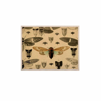 "Suzanne Carter ""Vintage Cicada"" Bugs Pattern KESS Naturals Canvas (Frame not Included)"