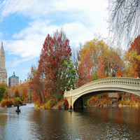 Central Park in Fall #2
