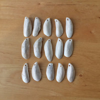 15 Drilled Shells/ Sea Shell Crafts/ Jewelry Making Supplies / Natural Shells/ Crafting Seashell/Drilled Natural Shell/Beach Finds/Set of 15