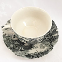 Johnson Brothers Enchanted Garden Tea Cup and Saucer