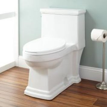 MODERN ELONGATED ONE-PIECE TOILET (white)