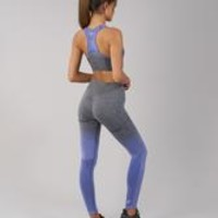 Gymshark Ombre Seamless Leggings - Indigo/Black