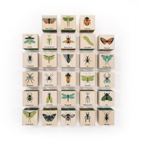Bugs Alphabet Blocks