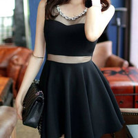Black Mesh Paneled Skater Dress