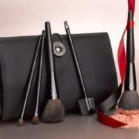 MARY KAY BRUSH COLLECTION 5 BRUSHES AND CASE $48 RETAIL