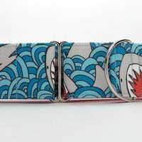 Shark Bait Dog Collar (Martingale, Buckle or Tag)