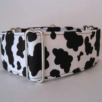Cow Martingale Collar, 2 Inch Martingale Collar, Black, White, Greyhound Collar, Cow Dog Collar, Sighthound Collar, Cow Doggie