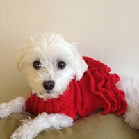 party dress for your furbaby,Dog clothes, pet dress, red sweater dress with lots of frills, and a little lurex sparkle.