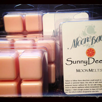SUNNY DEELISH Moon Melts - soy wax melts/tarts