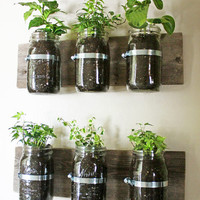 Make A Wall Mounted Spice Rack From Canning Jars Not Just A Housewife | Apartment Therapy Re-Nest