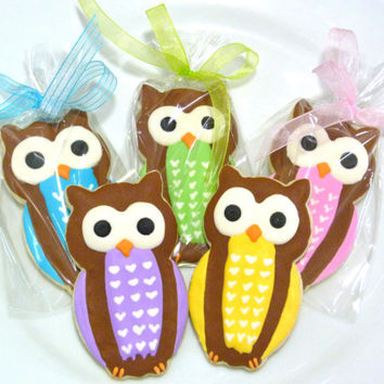 Handmade Owl Sugar Cookie Favors for Girl Baby Shower Boy Baby Shower Gender Reveal Party