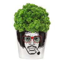 Flower Pot Small - Herbal Jimi