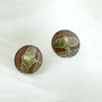 Small Earrings Luna Moth Green Pretty Photography Art Fashion Gifts For Her Hypoallergenic