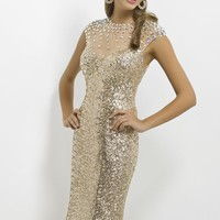 Beaded Sheer by Blush by Alexia