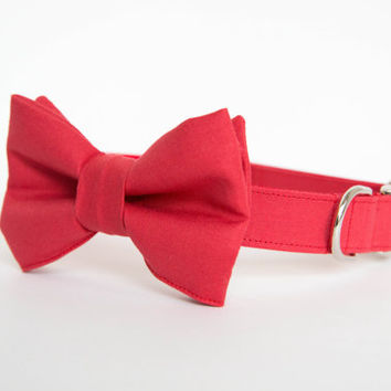 Bowtie Dog Collar - Red Gentleman's Collar