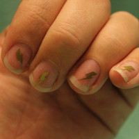 Harry Potter Lightening Bolt Fingernail Stickers x20