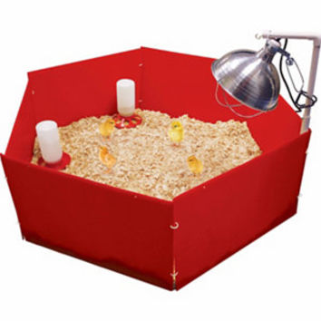 Harris Farms Chick Nursery with Brooder Lamp Stand - For Life Out Here
