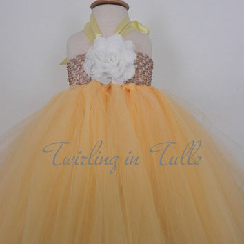 Yellow Tulle Birthday Dress Size  2-4T