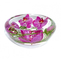 Phalaenopsis Medium Flower Bowl