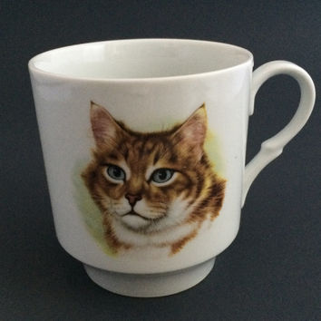 Vintage SCHUMANN ARBERG Cat Kitten Coffee Tea Cup mug Made in BAVARIA Germany