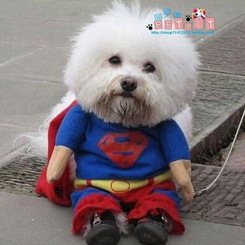 Puppy lovely Superman Pet Dog Clothes Halloween apparel Costumes Cute Jumpsuit = 1946356868