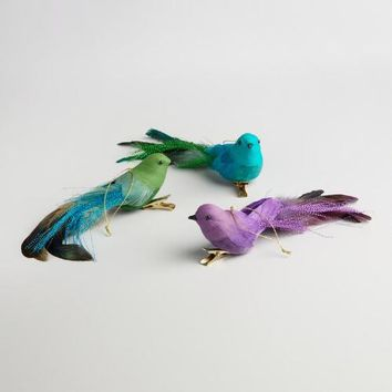 Bird Clip Ornaments Set of 3