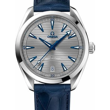 Omega Seamaster Aqua Terra Automatic Mens Watch 220.13.41.21.06.001