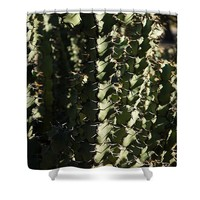 Sharp Shapes And Shadows Shower Curtain