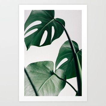 Monstera Art Print by New Wave Studio