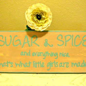 "Painted wood sign ""Sugar & Spice and everything nice.  That's what little girls are made of."""
