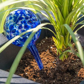 Evelots Plant Watering Globe-Glass-Automatic Water System-Indoor/Outdoor