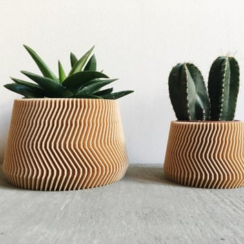 Minimalist Geometric Wood Planter for succulents or cacti / Made in France SAVANNE